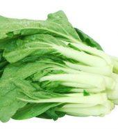 白菜苗 袋, 1.2-1.5磅