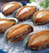 急冻煲汤鲍鱼 3-4个 0.9-1.1磅