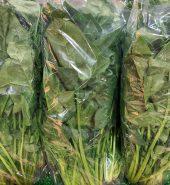 中国菠菜 袋 1.8-2磅