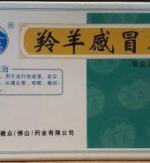 DeZhong Brand LingYang GanMao Pian 24 Tables 德众牌 羚羊感冒片 24片