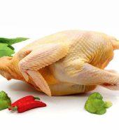 永达农场 台湾土鸡 急冻 2.5-3磅