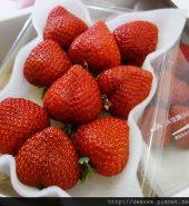 日本博多甘王 草莓 270g*2包